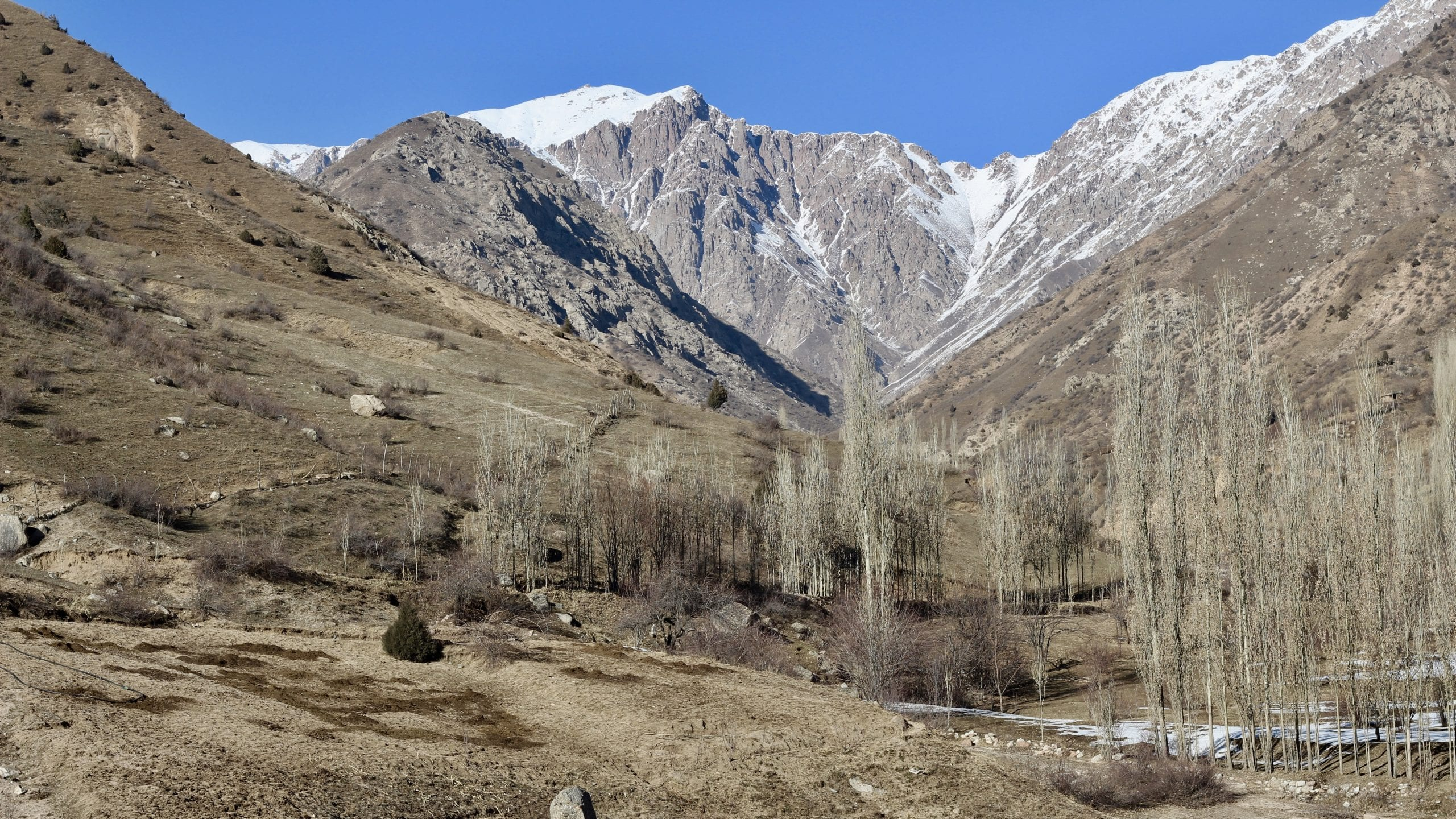 Read more about the article Hiking :: Romit Valley :: Dara Village Trail